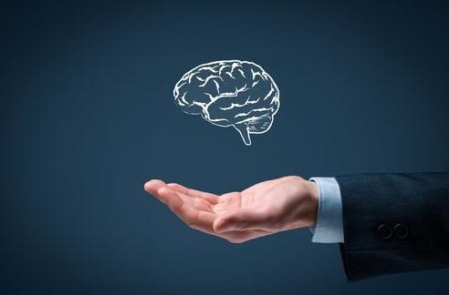 6 dicas de metodo trader | mao estendida e cerebro